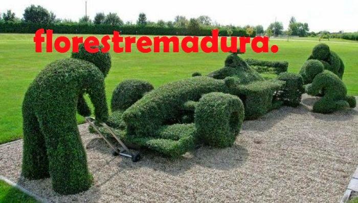 FLORESTREMADURA