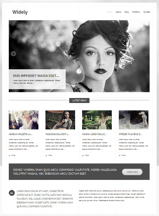 Download Widely WordPress Theme Free