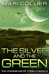 June 2018 Book Cover Contes Winer: The Silver and The Green