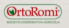 Collaborazione con: