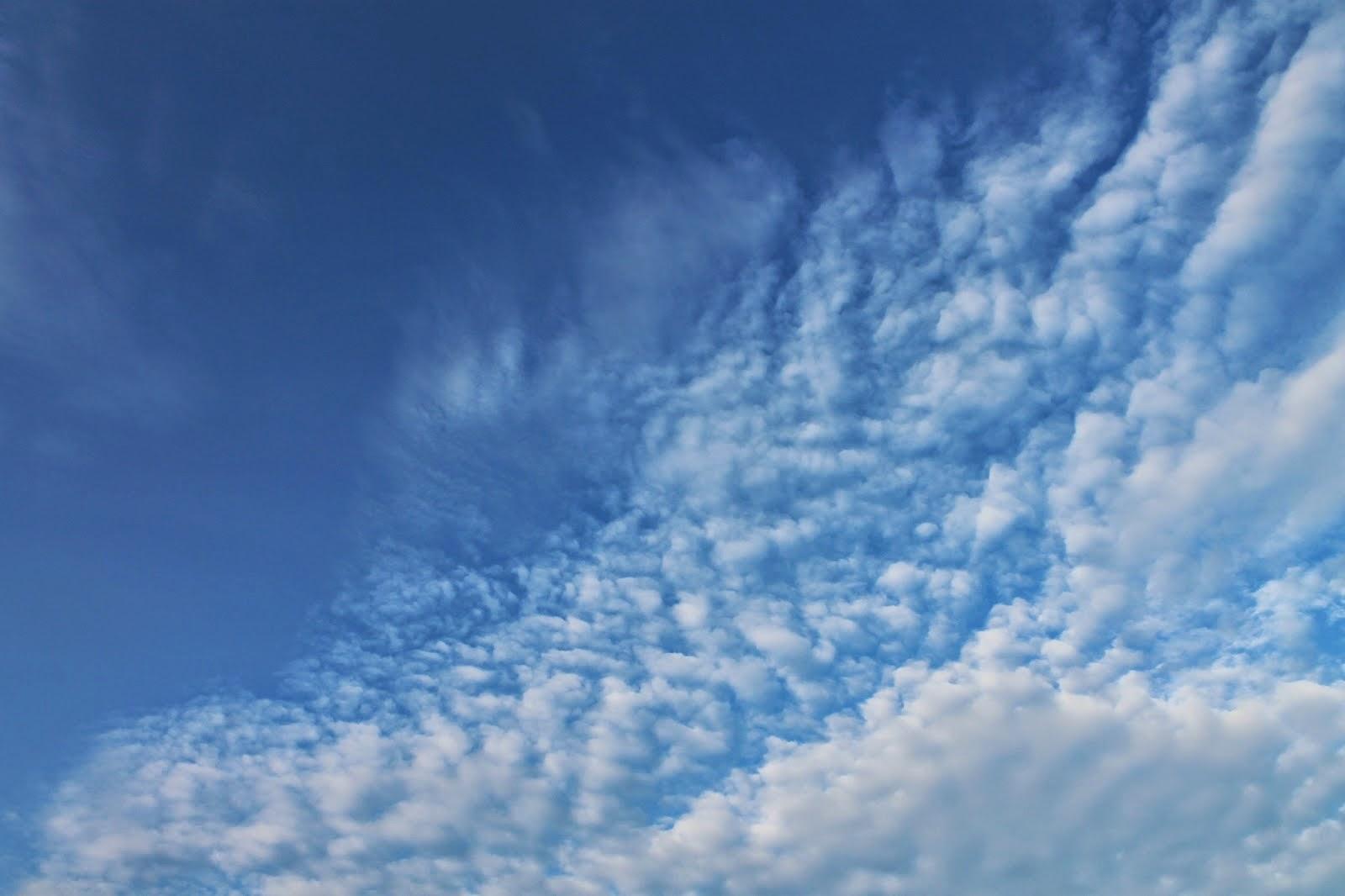 Langit Berwarna biru Akibat Efek Tyndal