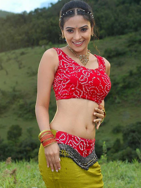 Aditi Sharma hot Navel show in Blouse and skirt