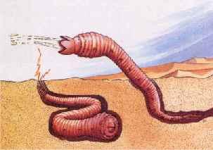 Misterios - Página 30 Mongolian-death-worm+(1)