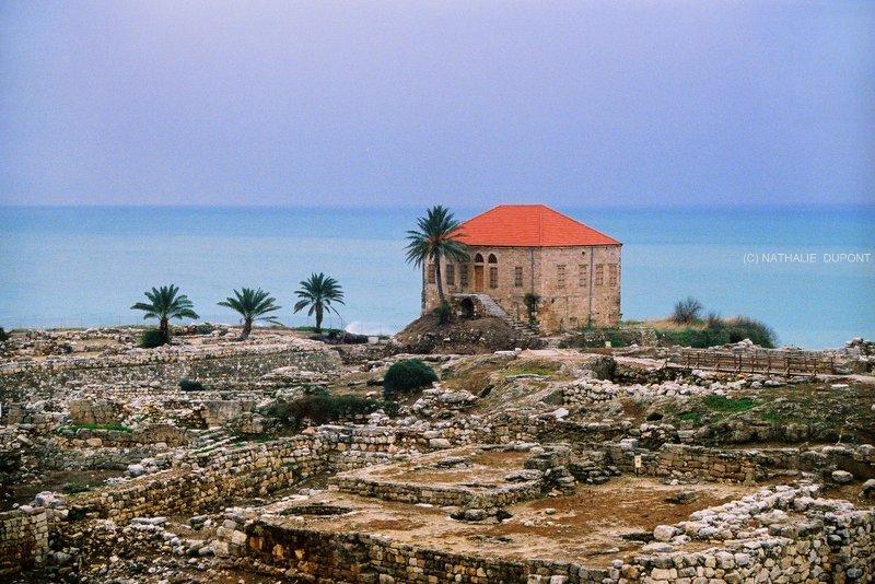 Nathalie dupont une semaine libanaise for Maison prefabriquee liban
