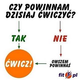 Fit.pl