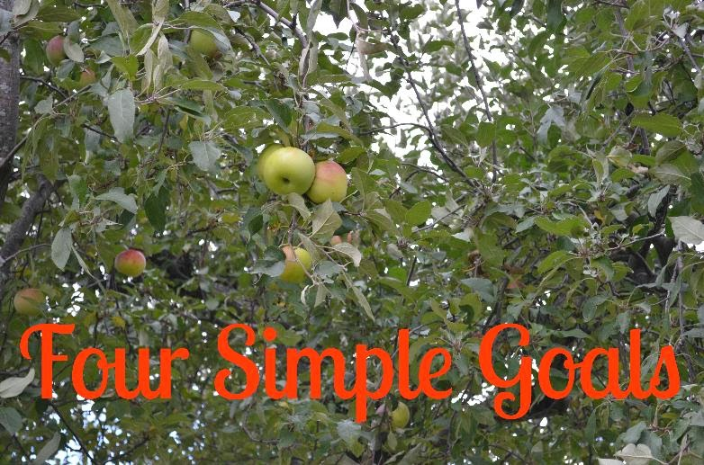 Four Simple Goals Before 2014