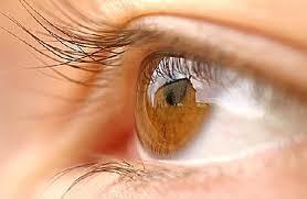 eye_health