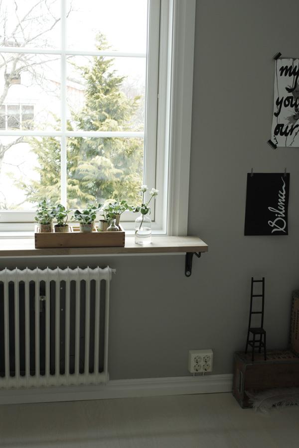 kontor i grått och vitt, arbetsrum, pelargoner i fönstret, sticklingar pelargoner