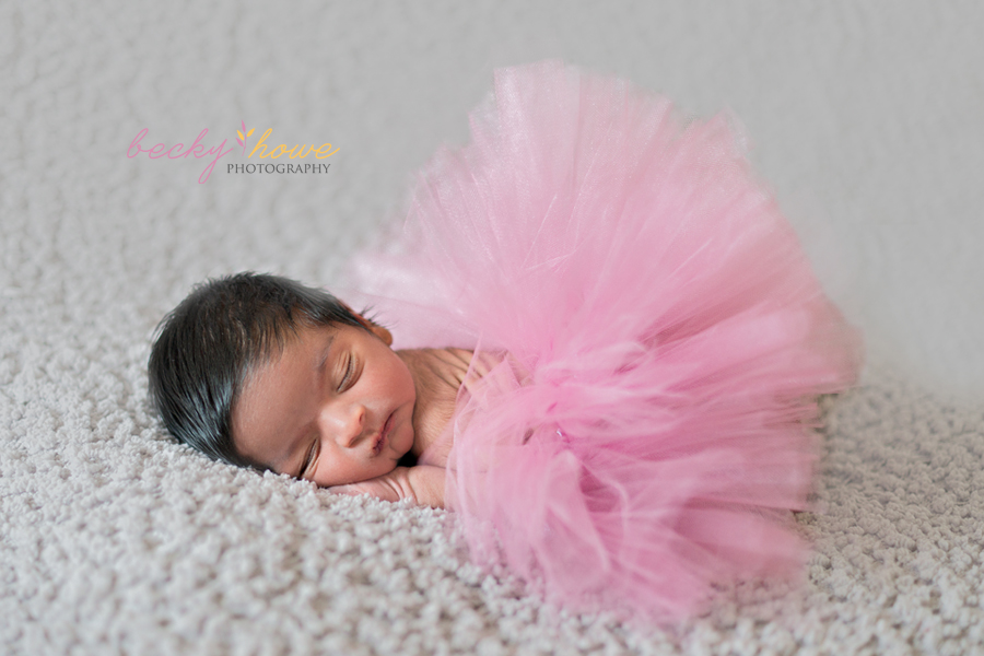 newborn photography sleeping newborn girl tutu grey pink