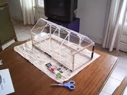 Como hacer un mini invernadero semillero casero - Mini invernadero casero ...