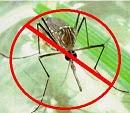 برنامج طارد الناموس Anti Mosquito Software Pack v1.1