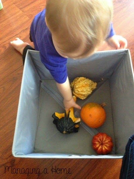 Fall Discovery Boxes | Managing a Home