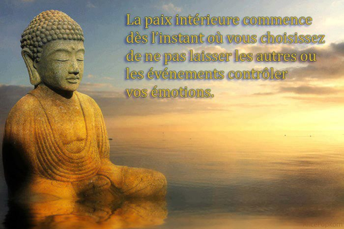 Citations option bonheur citations de sagesse des grands for La paix interieur