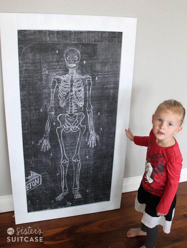 Mr Bones Magnetic Skeleton For Kids My Sisters Suitcase