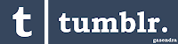 Tumblr Logo Text Font and Color Used