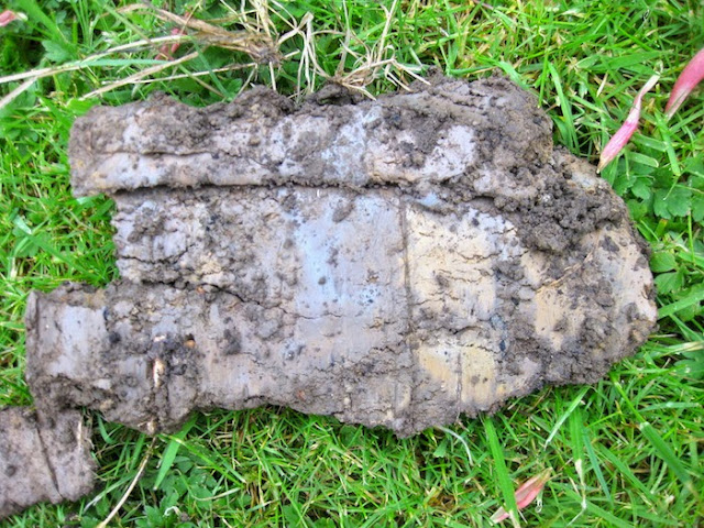 Roger brook the no dig gardener understanding clay soil for Mineral soil definition