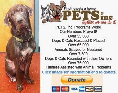 Pets Inc.