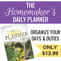 Looking for a daily planner?