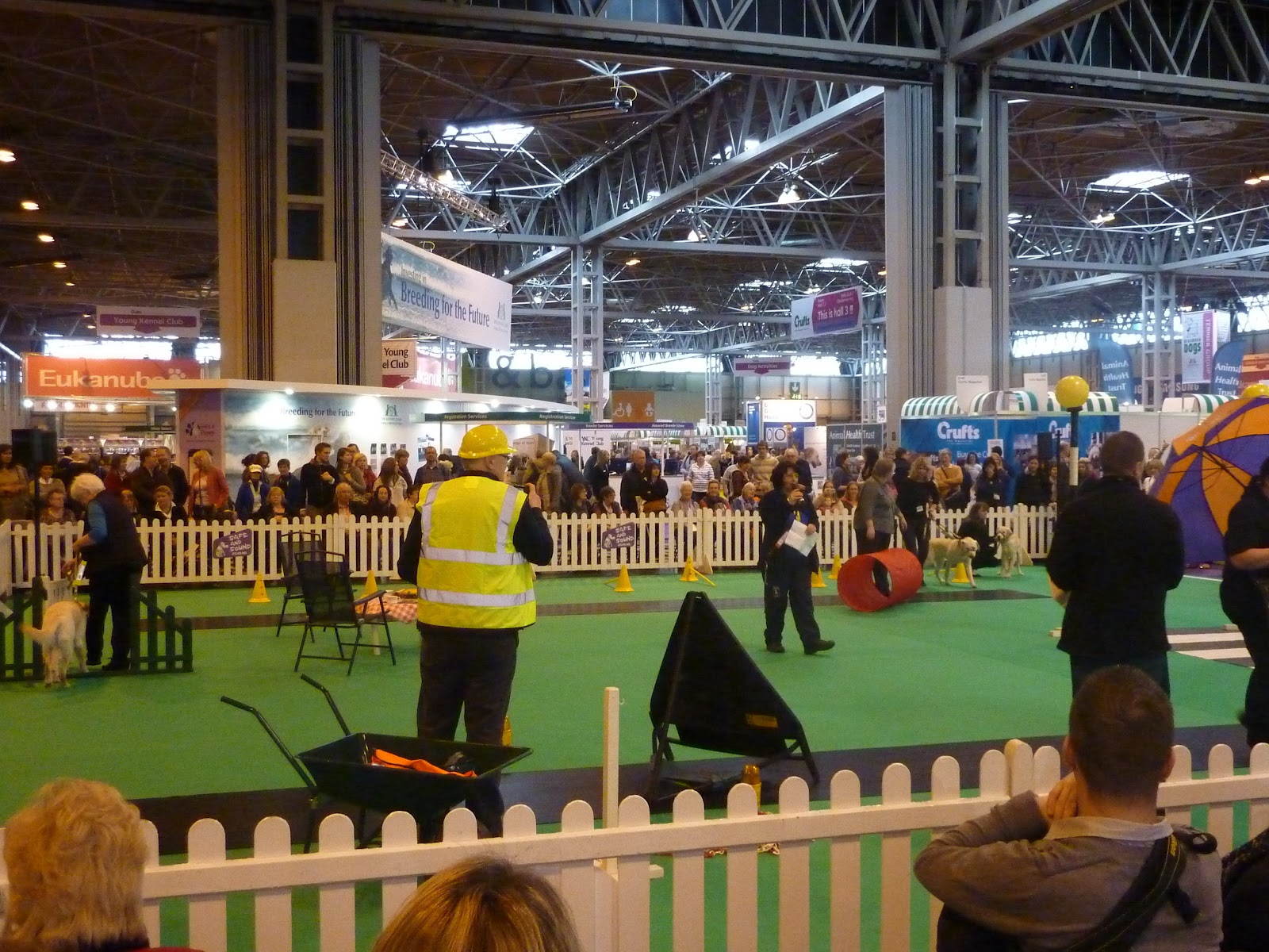 Trade Stands Crufts 2015 : Crufts a great family day out dancing in my wellies