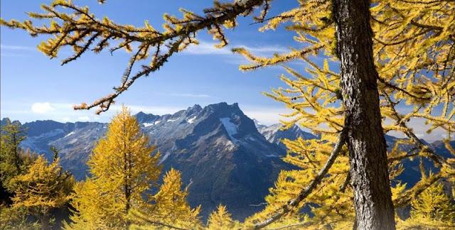 Central Cascade Mountains, Glacier Peak Wilderness, Washington, USA