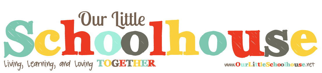 Our Little Schoolhouse | Homeschool Family of 10