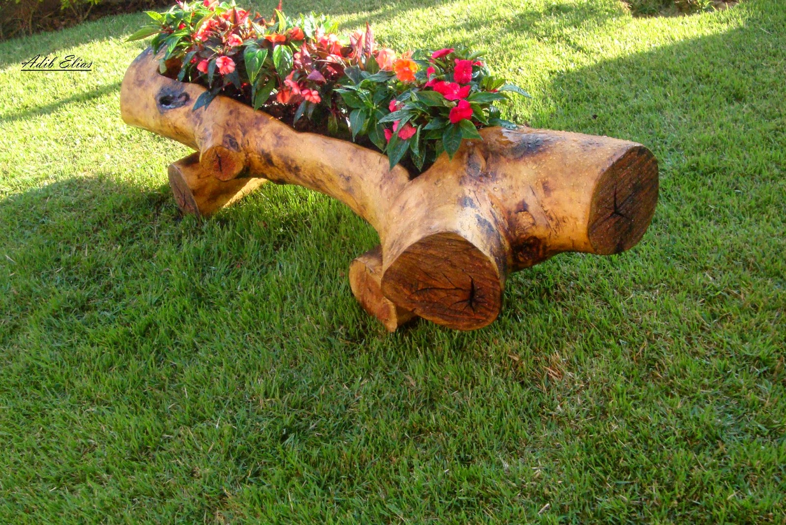 Floreira em tronco de madeira #713C19 1600x1069