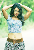 Deviyani sizzling hot photos gallery-thumbnail-15