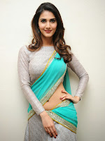 Vaani Kapoor Photos at Aha Kalyanam Pm at FM Radio station-cover-photo