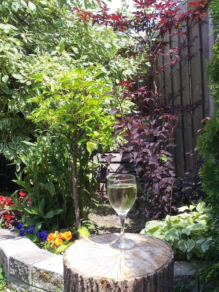 Wine in the garden, backyard, summer, long weekends