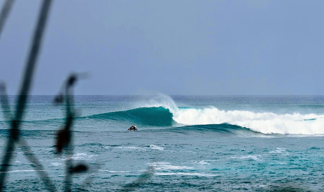 8 Vans World Cup of Sufing 2014 Lineup Foto ASP
