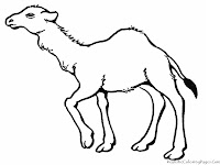 Realistic Camel Coloring Pages Printable