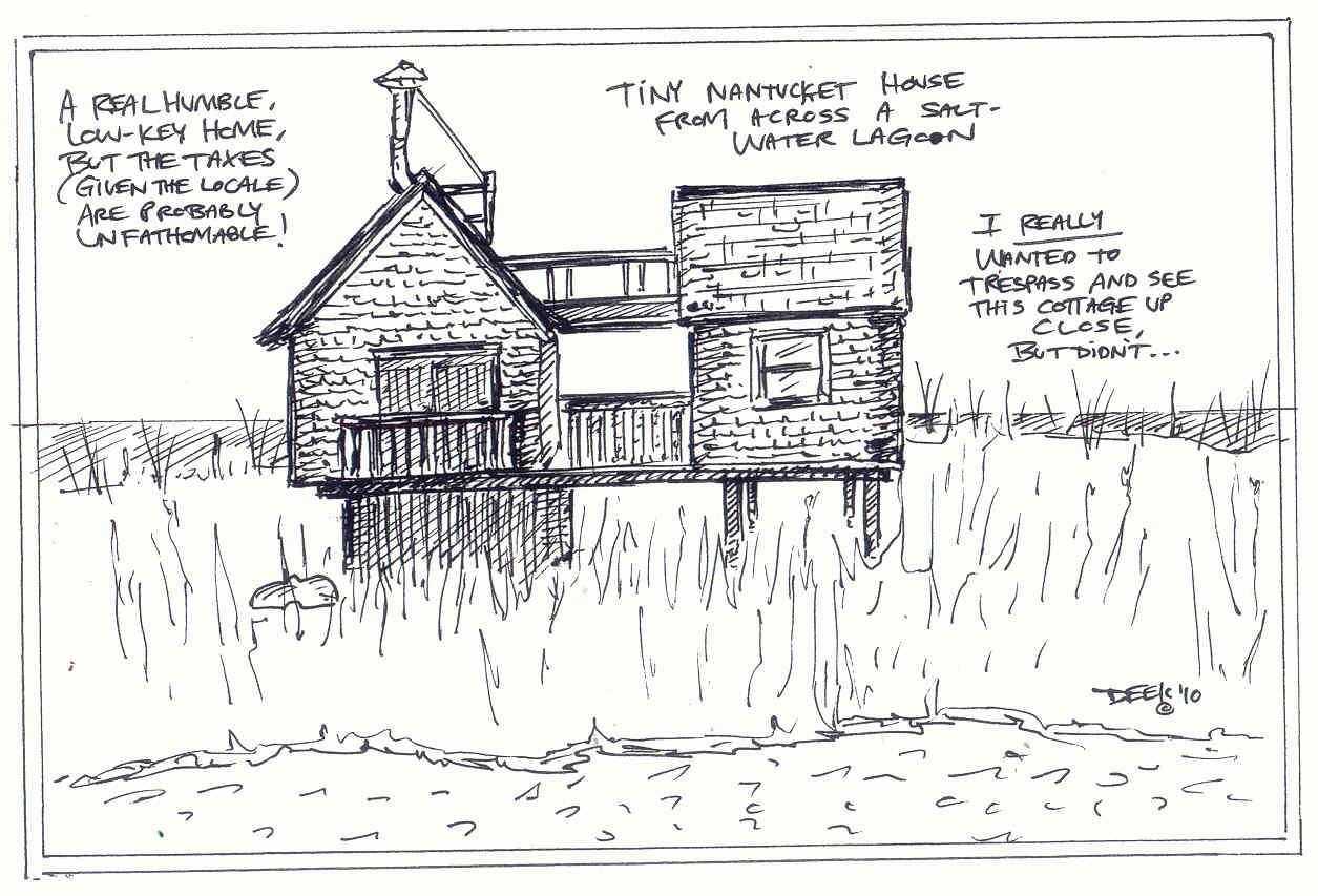 Nantucket Tiny House In A Marsh Setting