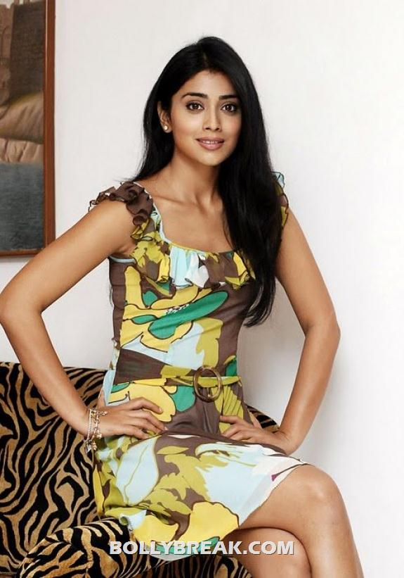 Shriya Saran Posing on couch - (2) - Shriya Saran New photos