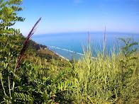 San Bartolo view!