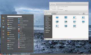 Cinnamon 2.4 Ubuntu 14.04