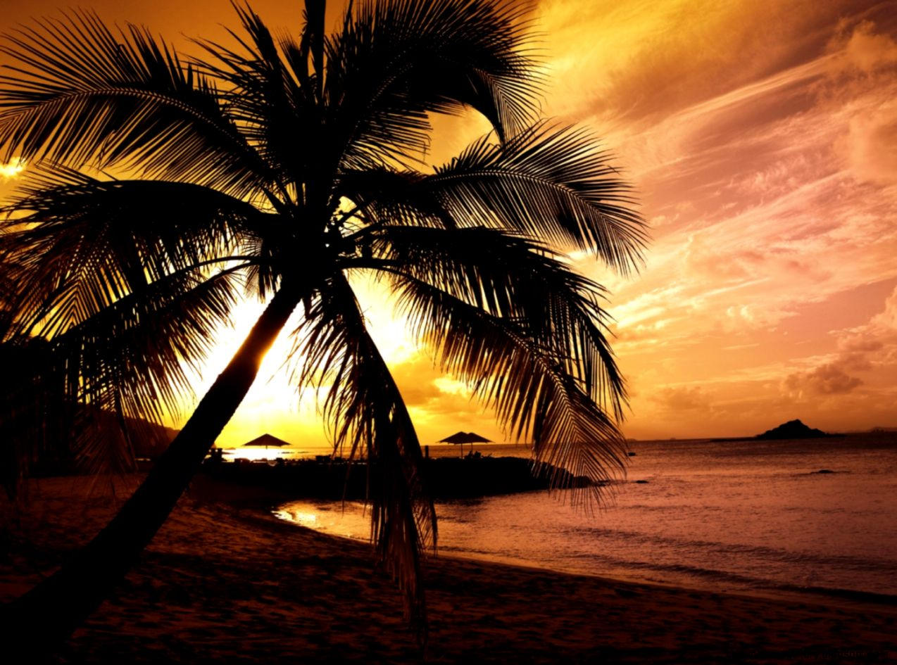Wallpapers Sunset X Tropical Sunrise Pictures Free 1400x1050
