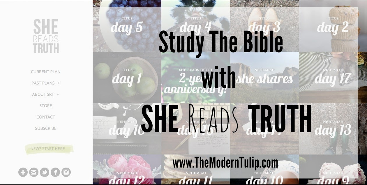 How to study the bible with she reads truth