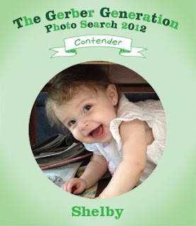 Gerber Photo Search
