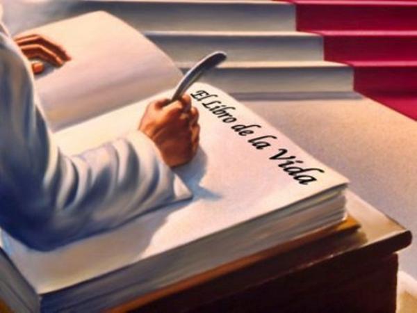 el arbol de la vida libro: