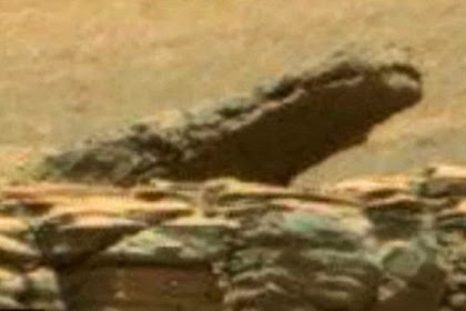 Penampakan 'Buaya' Terlihat di Planet Mars