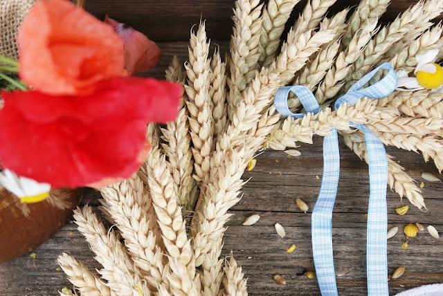 wianek z kłosów pszenicy, wianek ze zbóż, pszenica