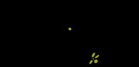 Minoca