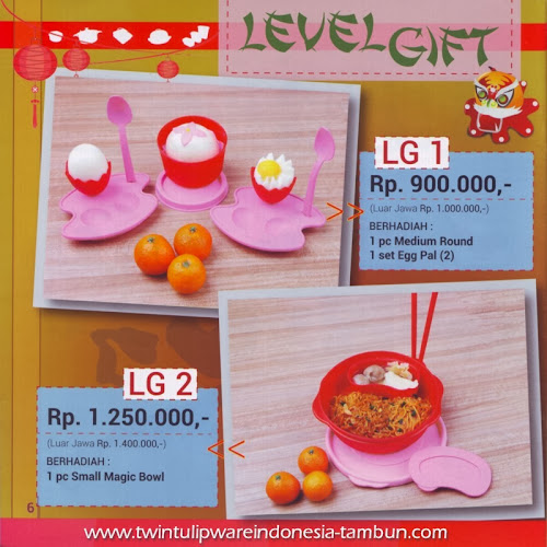 Level Gift Twin Tulipware | Januari - Februari 2014