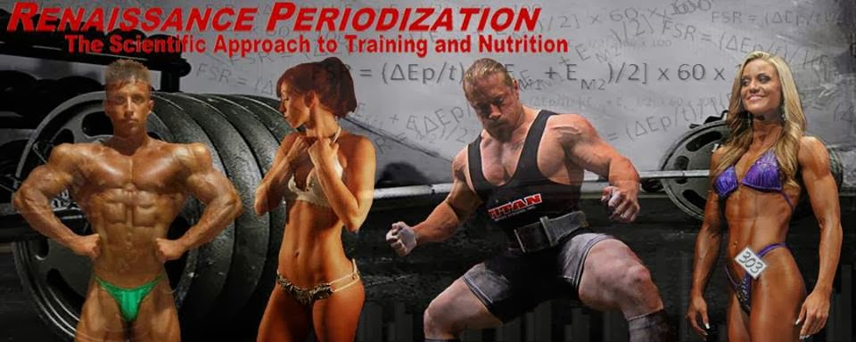 Renaissance Periodization