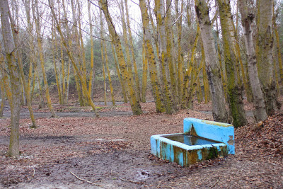 antequera-javi-lara-otoño-hojas-fuente-campo-superacion