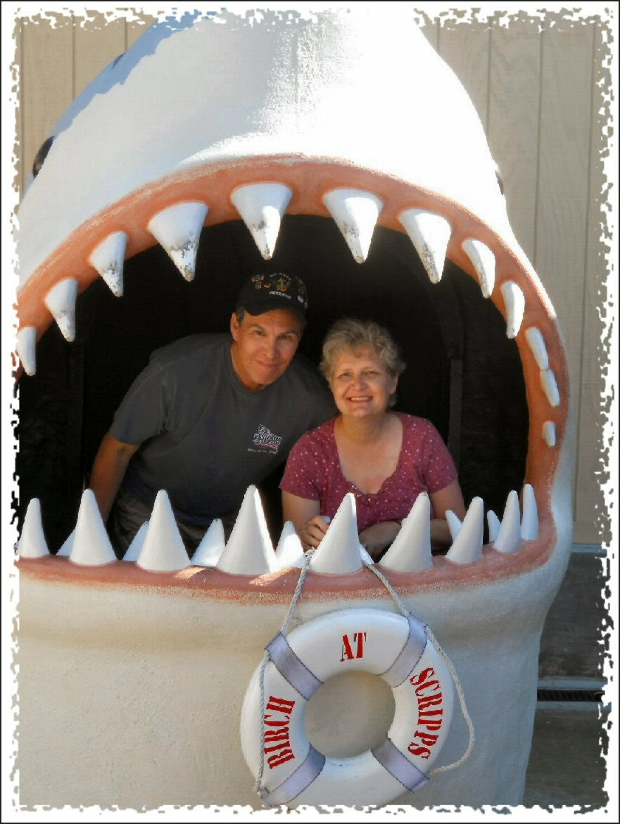 caught in jaws of shark photo image photo