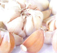 bawang putih, onion, manfaat bawang putih, bawang, khasiat bawang