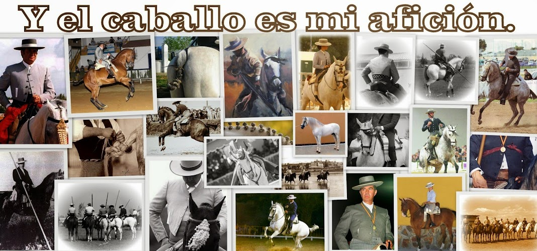 ...Y el caballo es mi afición