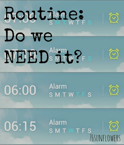Routine: Do we NEED it? // 76sunflowers