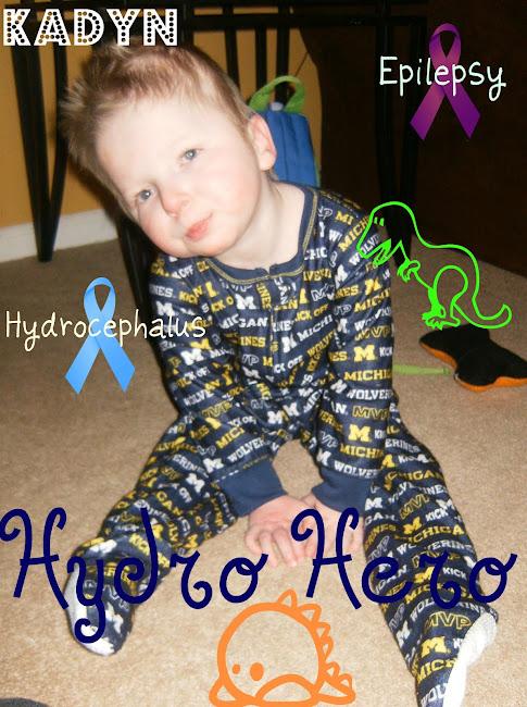 Hydro hero